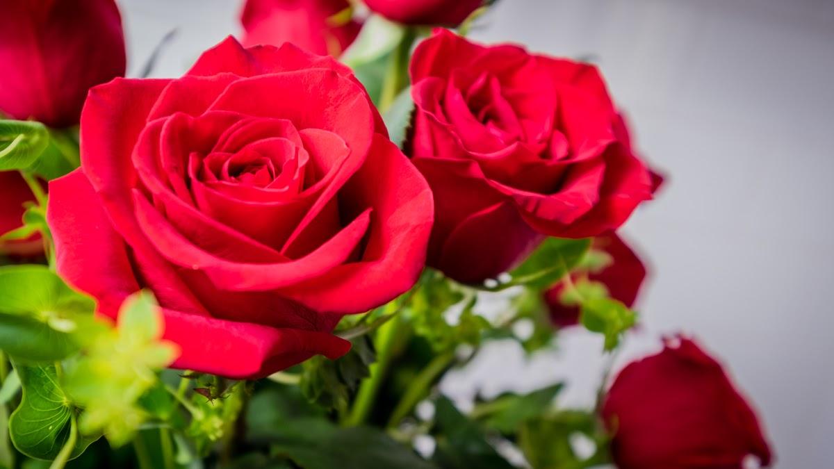Florist Online
